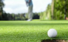 Golfer putting on the green. © Can Stock Photo / Deklofenak