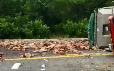 Police are investigating after a truck crash spilled tons of animal remains onto St. John's Rd. E in Norfolk County, July 31, 2018. (Photo courtesy of the OPP via Twitter)
