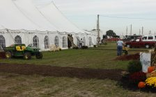 Volunteers prepare the IPM site before the event opens. (Photo by Angelica Haggert)
