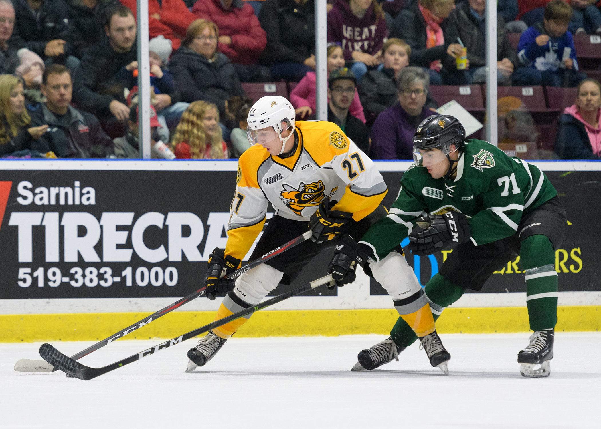Knights double up Sting 4-2