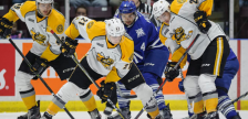 Sarnia Sting vs Mississauga Steelheads. October 14, 2018. (photo by Metcalfe Photography)