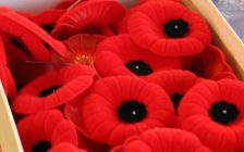 According to the Royal Canadian Legion, you could be disrespecting veterans by wearing any other type of poppy aside from the ones sanctioned and sold by the organization. November 5, 2018. (Photo by Greg Higgins)