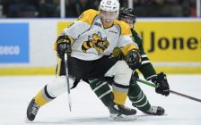 The Sarnia Sting take on the London Knights, December 12, 2018. (Photo courtesy of Metcalfe Photography)
