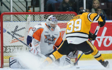 Sarnia Sting forward Jamieson Rees. (Photo courtesy of Metcalfe Photography)