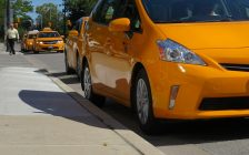 A row of taxis. (File photo by Miranda Chant, Blackburn News)