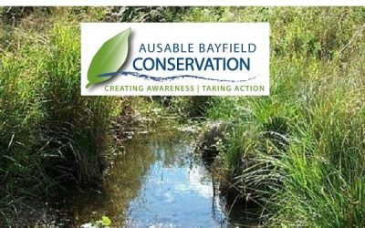 BlackburnNews com - Local conservation authorities feeling
