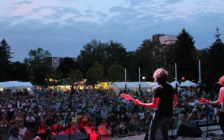 A crowd takes in a performance at the Home County Music and Art Festival in Victoria Park. Photo from www.homecounty.ca.