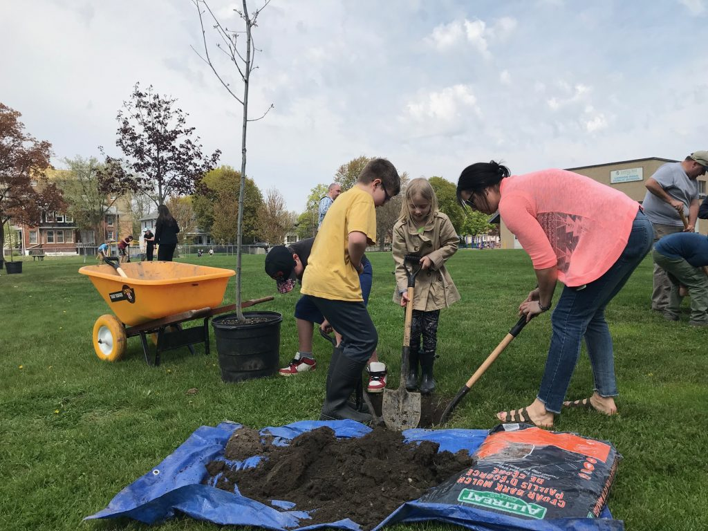 From left to right - Grade 3/4 students Avery Burden, Clark Austin, Brooklyn Cook work with Miss Parsley to plant a tree at London Road Public School. May 16, 2019 Photo by Melanie Irwin