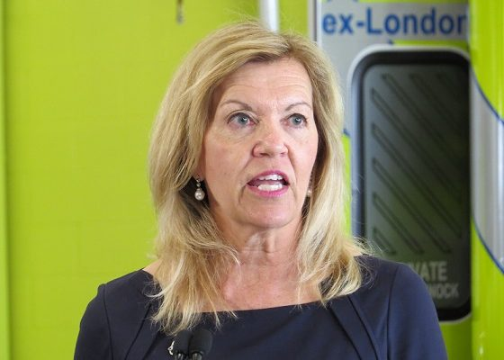 Ontario Deputy Premier and Minister of Health Christine Elliott. (Photo by Miranda Chant, Blackburn News)