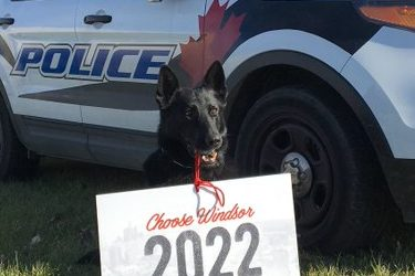 BlackburnNews.com - Windsor police say goodbye to one of their own while introducing a new sniffer