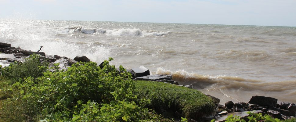 Lake Erie on August 26, 2019 (Photo by Allanah Wills)
