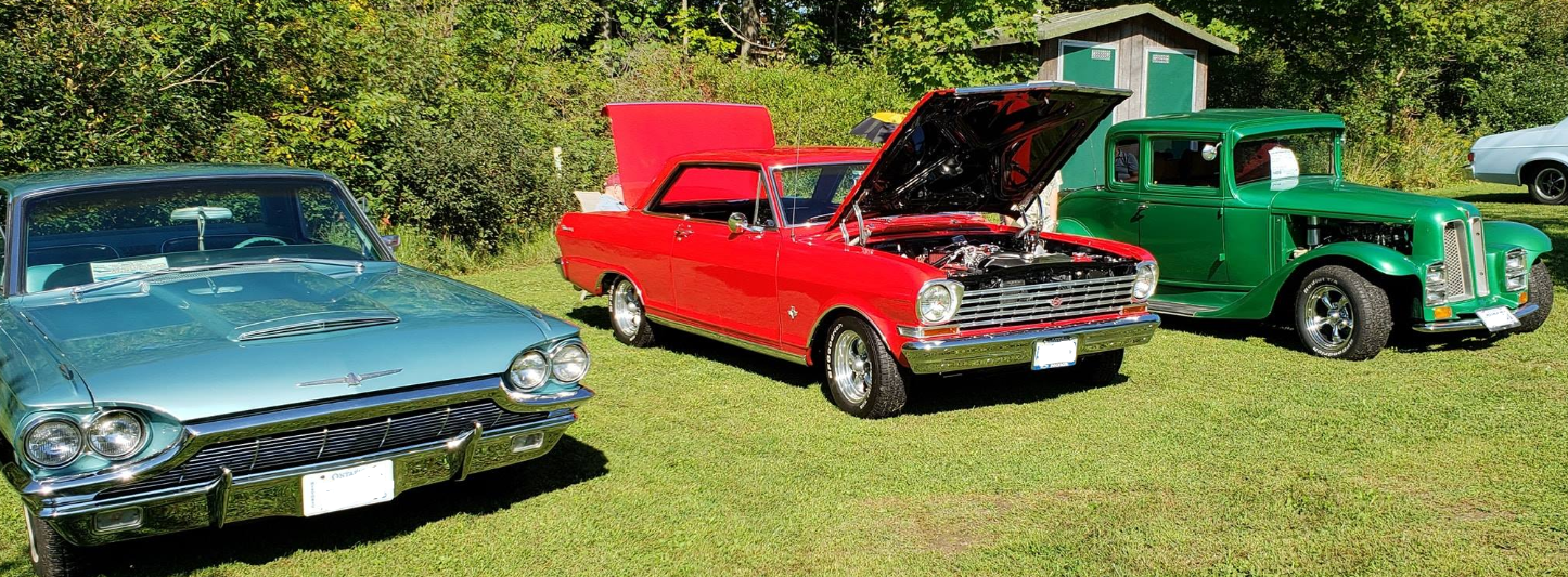 Cars on display at the Bruce Redman Antique Car Show in Arkona. September 2019. (Photo by Arkona Lions Club)