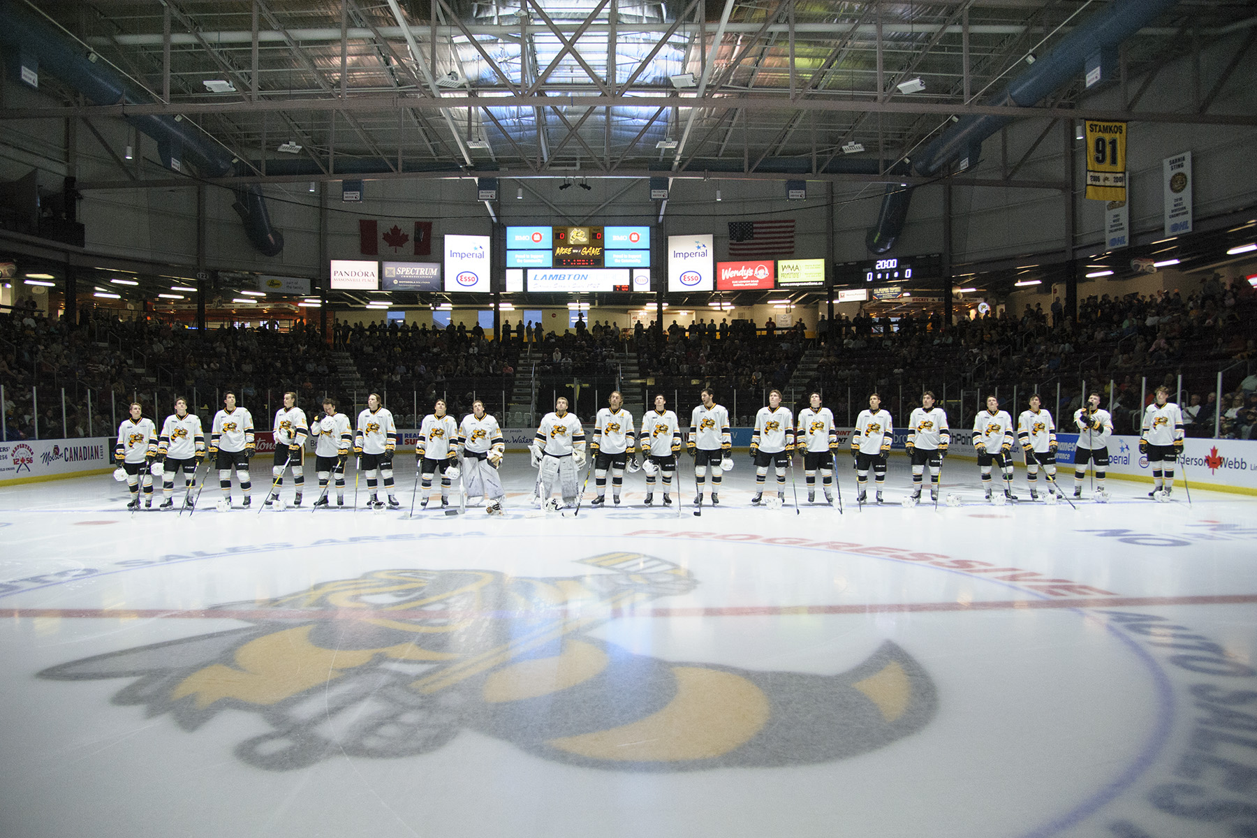 Sarnia Sting 2019-20 (Photo courtesy of Metcalfe Photography)