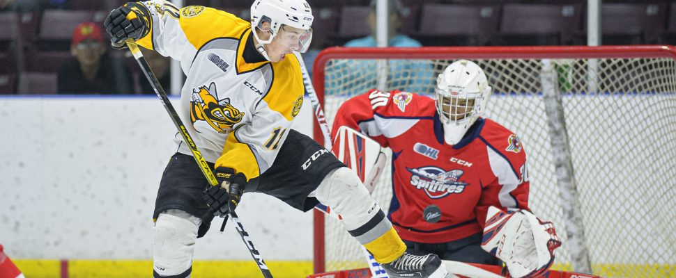 Sting vs Spitfires Sept. 13, 2019 -Photo courtesy of Metcalfe Photography