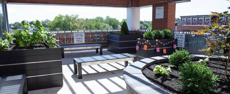 Chatham-Kent Health Alliance's (CKHA) rooftop garden patio is now open for patients, families and visitors to enjoy. The patio can be accessed through the Family Room located on the Complex Continuing Care unit in Zone E, Level 3 at the Chatham Site. (Photo courtesy of the Chatham-Kent Health Alliance)