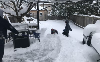Sarnia-Lambton residents digging out (GALLERY) - BlackburnNews.com