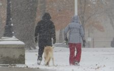 A couple and their dog walk through Victoria Park in London in snowy conditions. (File photo by Miranda Chant, Blackburn News)