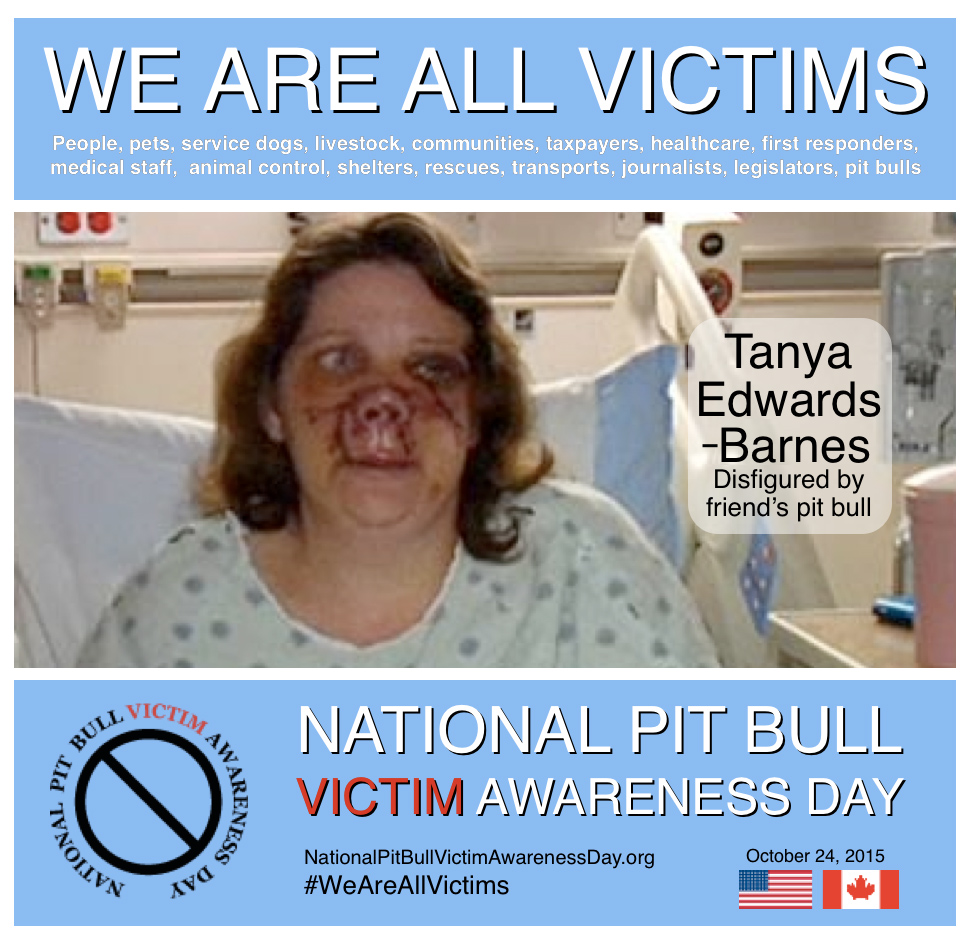 pit bull victims2