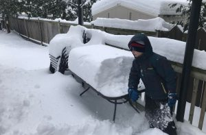 Sarnia-Lambton digs out after early November snow storm. November 12, 2019 Photo by Melanie Irwin