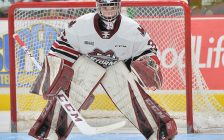 Nico Daws of the Guelph Storm. Photo by Terry Wilson / OHL Images.
