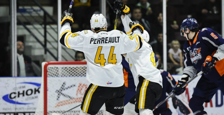 Sarnia Sting forward Jacob Perreault celebrates a goal against the Flint Firebirds. November 1, 2019. (Photo provided by Metcalfe Photography)