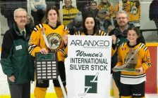 Sarnia Lady Sting Bantam B Silver Stick champions 2020 (Submitted photo)