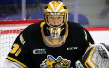 Jordan Kooy with the Sarnia Sting. (Photo courtesy of CHL via SarniaSting.com)