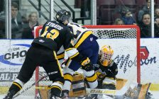 Sting vs Otters Jan 17 / 20. Photo courtesy of Metcalfe Photography.