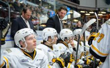 Sarnia Sting bench during a game against the London Knights. 29 December 2019. (Photo by Metcalfe Photography)