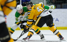 Sarnia Sting battle the London Knights from Progressive Auto Sales Arena. 1 February 2020. (Photo by Metcalfe Photography)