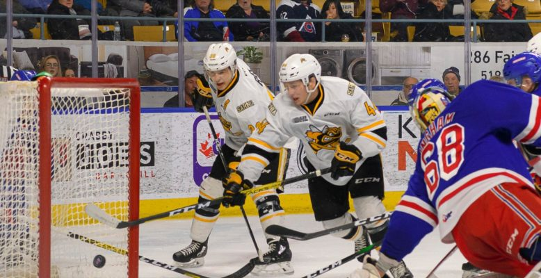 Sarnia Sting forwards Jacob Perreault and Jamieson Rees. (Photo by Metcalfe Photography)