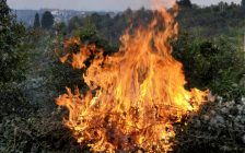 Open air burn. Dry leaves and branches burning in a pile in the countryside. © Can Stock Photo / Nikolafotons