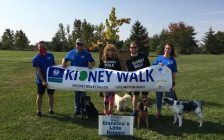Team Grandma's Little Helpers taking part in the 2020 Kidney Walk in Sarnia-Lambton. September 2020. (Photo from the Kidney Foundation of SL Facebook page)