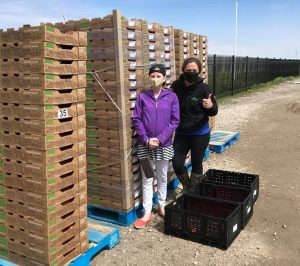 12-year-old Bryanna purchases tomatoes from Platinum Produce (Photo via Platinum Produce Facebook)