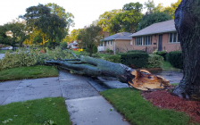 September 22, 2021 Storm Damage. Submitted photo by Dave LeClair.